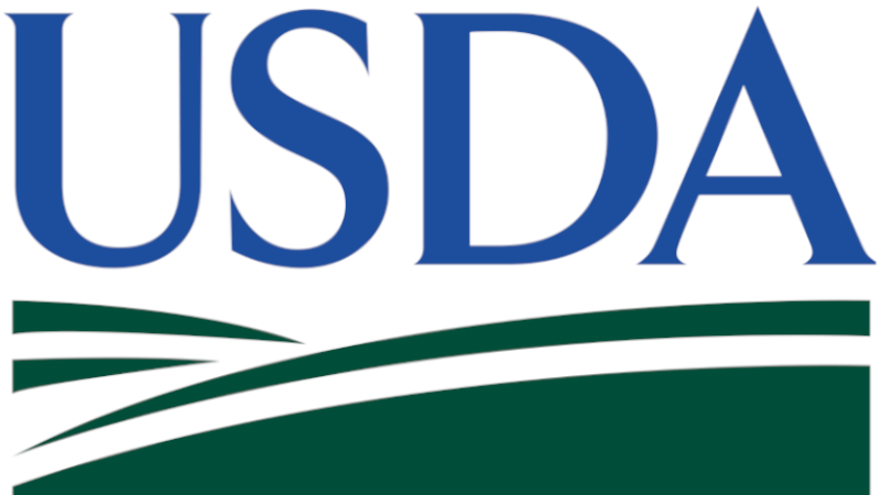 Custer Co. FSA Encourages Producers to Complete 2021 Spring Crop  Acreage Certification