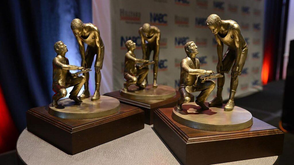 WSC Men's Basketball Players Earn NABC Honors Court Award, Team Award