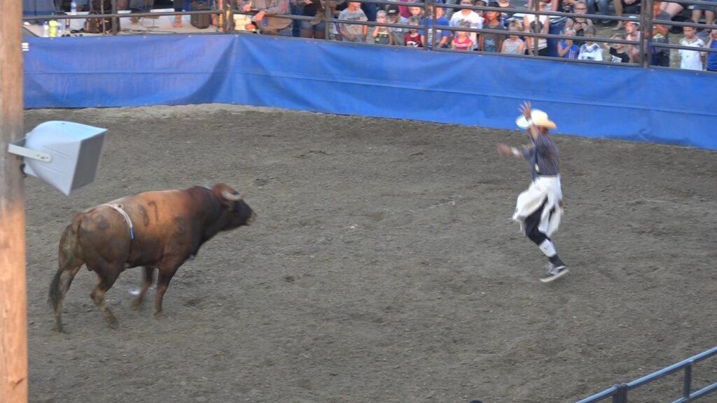 Wayne County Fair Opens With Bull Riding, Bullfighting