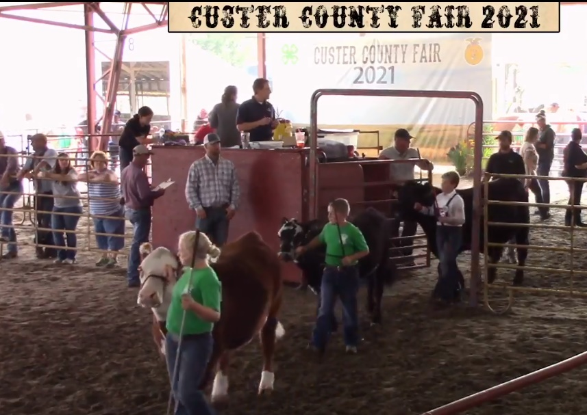 Ag Society Reviews County Fair, Sets Date for 2022