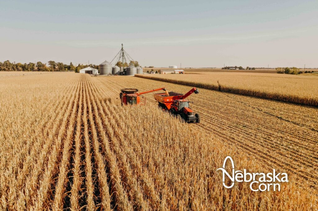 Safety Reminders For Farmers, Farm Workers, Rural Residents To Be Familiar With