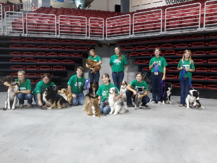 Dog Gone Fun 4-H Club Had Eight Competitors Finish In Top Six At The Nebraska State Fair
