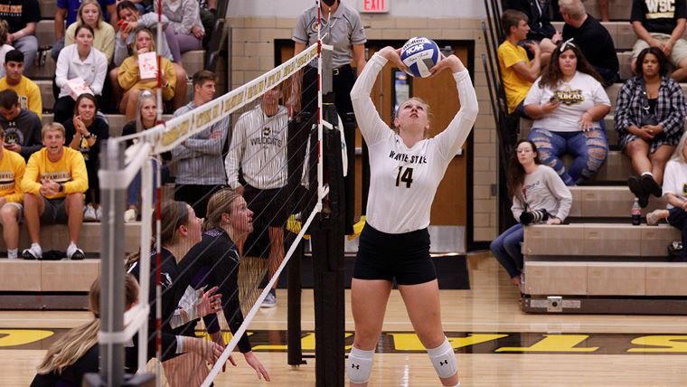 Wildcat Volleyball Moves To #5 In Rankings, Walker Tabbed NSIC Setter Of The Week